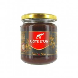 Côte d'Or pâte tartiner chocolat noir 300 gr CHOCKIES